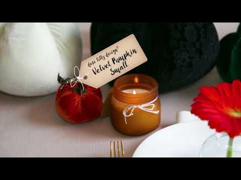 Pumpkins for Fall | debi lilly design™ | Safeway