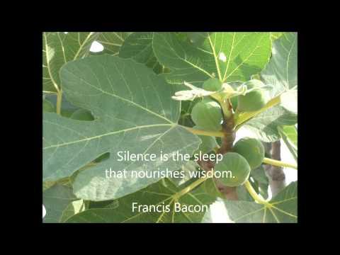Mindfulness in the Classroom - Listen to the Sounds - Hélène van Oudheusden