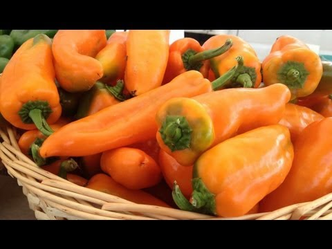 Baltimore photographer research: How to roast peppers - bbq grilled pepper recipe