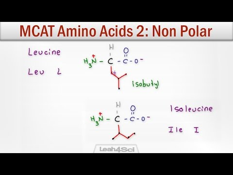 MCAT Amino Acids 2 - Hydrophobic Non-Polar Neutral Side Chains