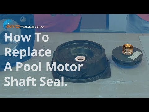 How To: Replace a pool pump motor shaft seal