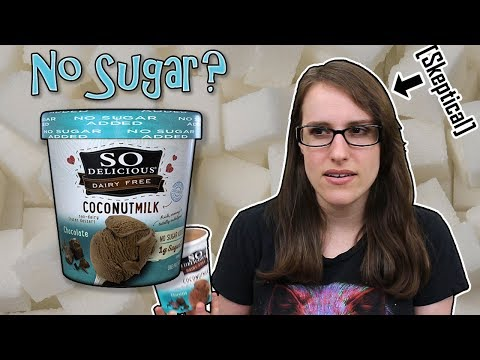 Sugar Free Vegan Ice Cream? (So Delicious No Sugar Added Coconut Milk Dairy Free Ice Cream)