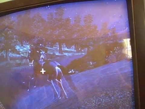 Oblivion, Killing Horses It's What We Do