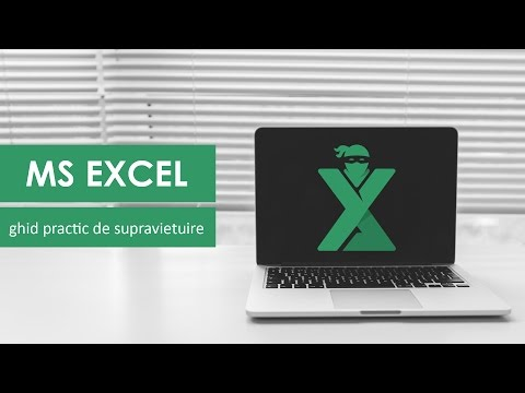 Curs Excel Online - Introducere