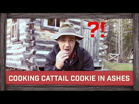Cooking Cattail Cookie in Ashes!