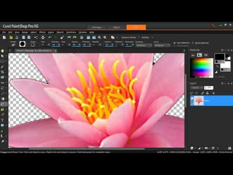 Create Your Own Picture Tubes in PaintShop Pro X6