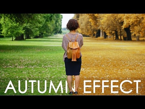 Autumn Color Effect - Photoshop tutorial + Action - Change Leaves & Trees Color in Photoshop