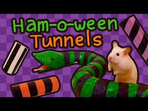 🐍 Stripey Halloween Snake Tunnels |  HAMSTER DIY 🎃