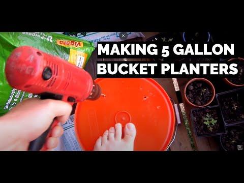 Apartment Balcony Gardening DIY IX: Making 5 Gallon Bucket Planters