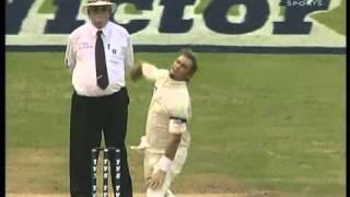 Virender Sehwag most epic bashing of Warne & McGrath, world class 155 runs!