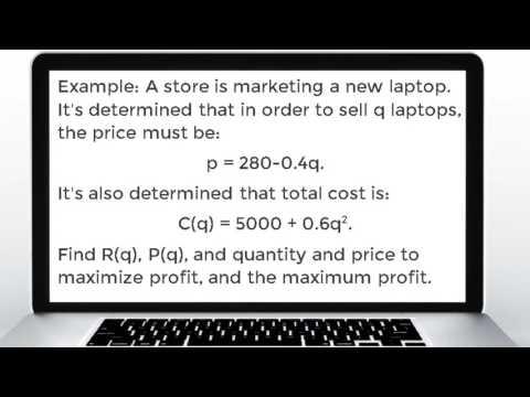 Overview of Economics - How Businesses Maximize Profit Using Calculus