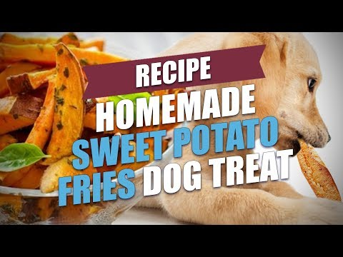 Homemade Sweet Potato Fries Dog Treat Recipe