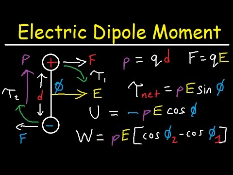Electric Dipole Moment, Force, Torque, Potential Energy, Work, Electric Field, Physics