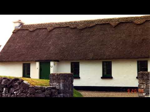 Red is the Rose (traditional Irish folk song) lyrics