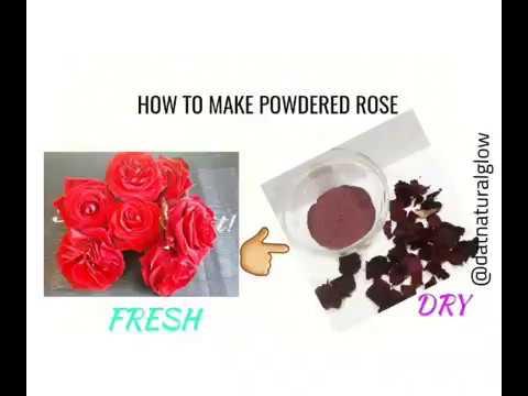 DIY HOW TO MAKE ROSE POWDER AT HOME