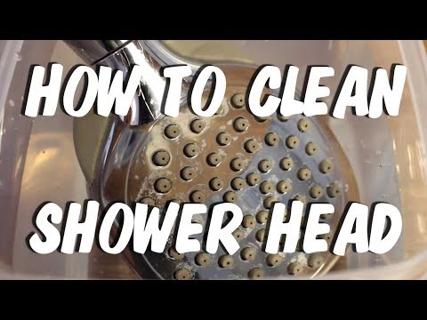 Easy Way to Clean & Descaling Your Shower Head