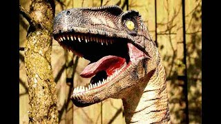 Download The Largest Dinosaurs -The Titanosaurs! | Do You know About This??? Video