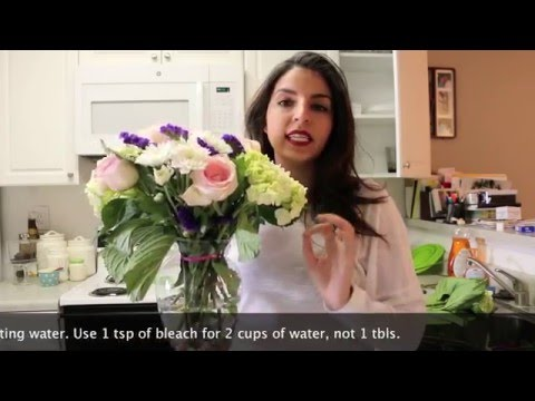 How to make flowers last longer - At Home with Reena