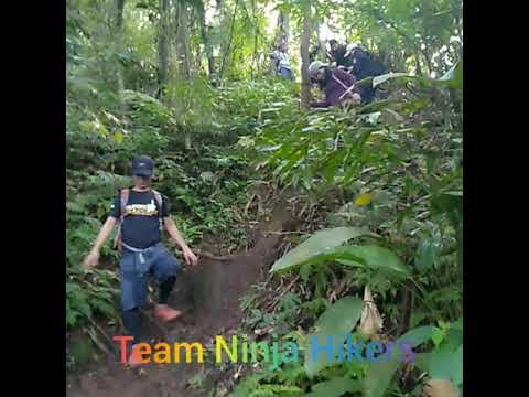 Team Ninja Hikers
