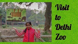 National Zoological Park Delhi (Zoo) Videos - 9tube tv