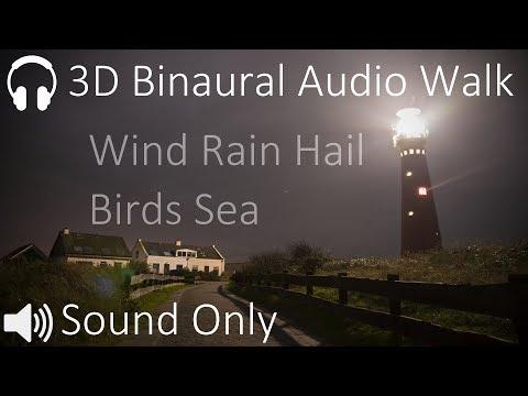 Walking through Wind, Rain and Hail (3D Binaural Audio Black Screen)