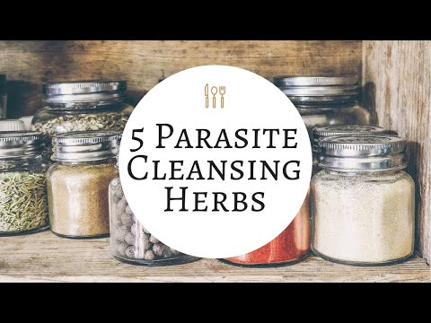 5 USEFUL Parasite Cleansing Herbs 🍵