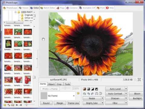 Photo Manipulation with Photoscape