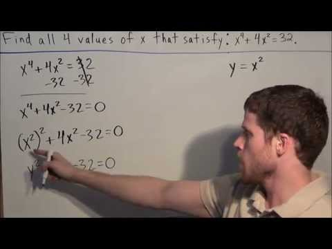 Finding Real and Imaginary Roots of a Polynomial Equation