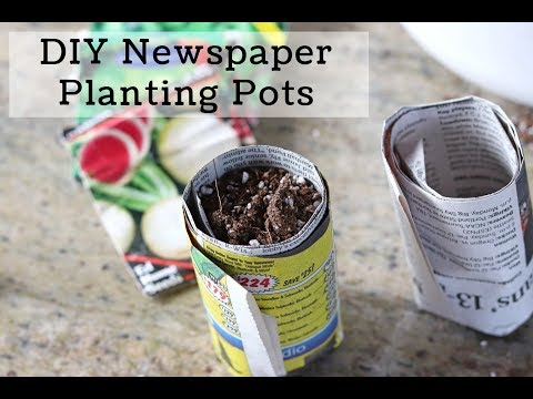 DIY Seed Starting Containers from Newspaper