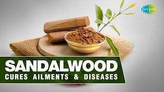 Sandalwood cures ailments & diseases | Masalon ki kahani | Anmol Kak | Saregama podcast