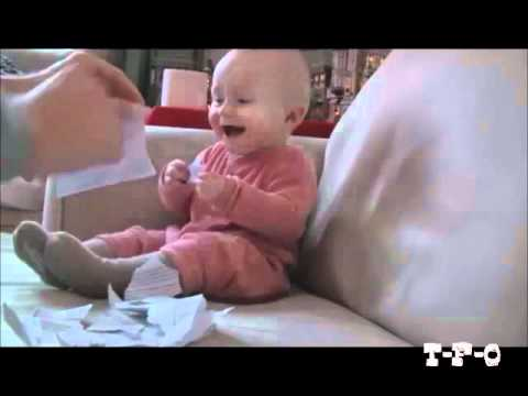 TFO -Baby Laughing Hysterically at Job Rejection Letter