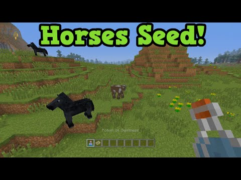 Minecraft Xbox 360 + One TU19 Seed Horses At Spawn & Name Tags