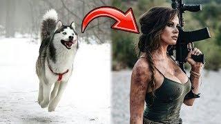 r/Prorevenge She Becomes John Wick to Get Her Stolen Dog Back!