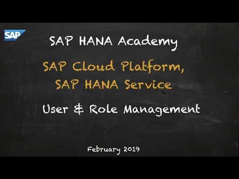 [2.0 SPS 04] SAP HANA Service (CF), User & Role Management - SAP HANA Academy