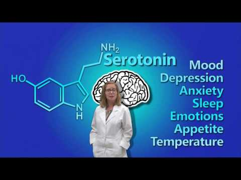 Dopamine, Serotonin, & Norepinephrine