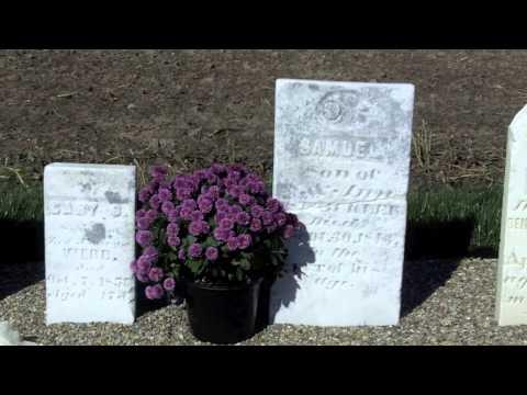 Webb Cemetery Headstones (Shelby County)
