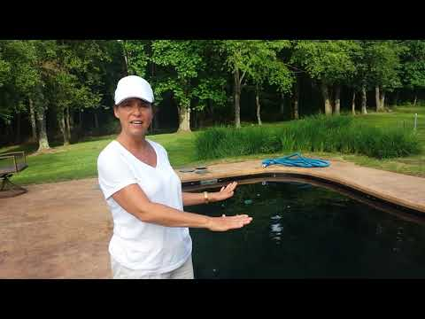 Connie took 7 Years to buy a pool....And is Thrilled!!