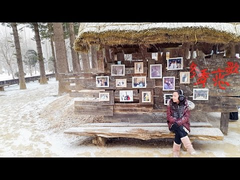 How to go to Nami Island from Myeongdong?