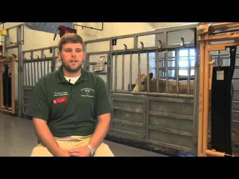 UGA Veterinary Medicine Student Discusses Studies, Goals After Graduation