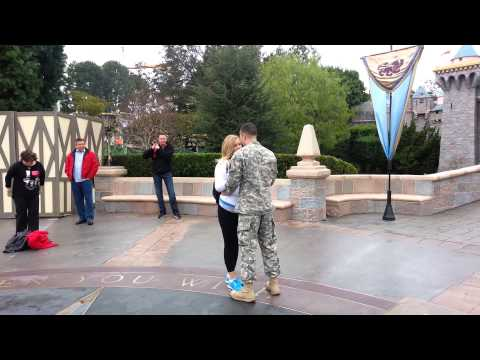Disneyland Park Proposal