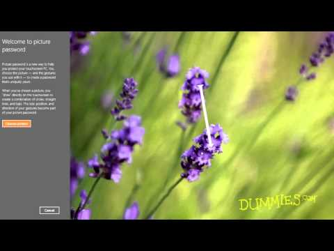 How to Set Your Windows 8 Password For Dummies