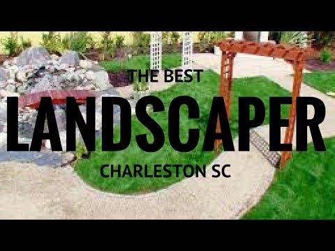 THE BEST LANDSCAPING COMPANY IN CHARLESTON SOUTH CAROLINA SC SOUTHERN GREEN