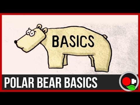 Are Polar Bears Really Going Extinct?