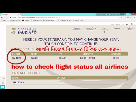 how to check flight status