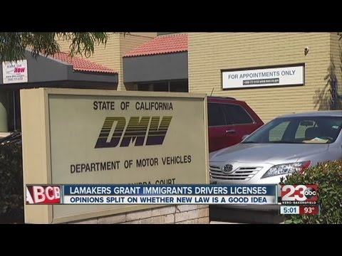 Drivers license ok'd for illegal immigrants