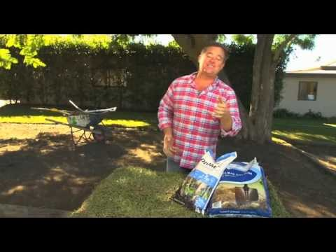 Gypsum and Lime (Dolomite) for your lawn preparation