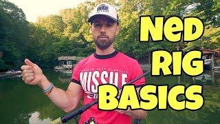 NED RIG BASICS