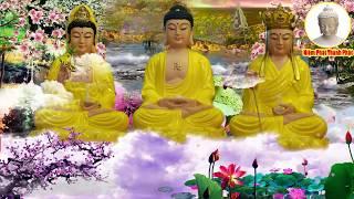 Mỗi Tối Nghe Kinh Phật Này Ngủ Ngon Tiền Tài  Phước Lộc Đến Đầy Nhà _ Cực Kỳ Linh Nghiệm