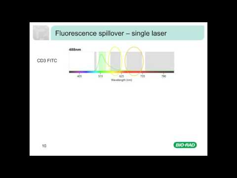 Fluorescence and Compensation in Flow Cytometry