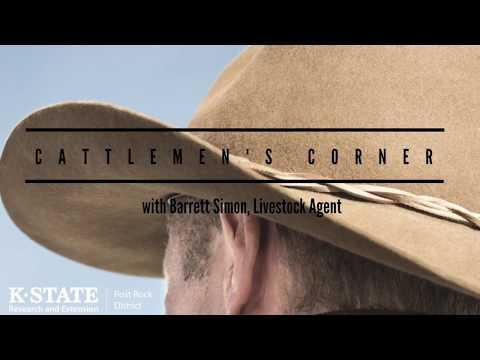 Cattlemen's Corner Episode #2: Bud Box System